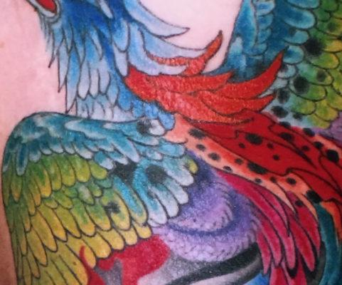 gallery-blog
